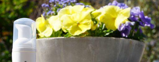 FRESH stay fresh – die Alternative zu feuchtem Toilettenpapier